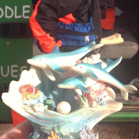 kayak club nautique rochefortais